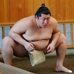 遠藤関が「徹子の部屋」に登場 。相撲界のイケメン、彼女の存在は?