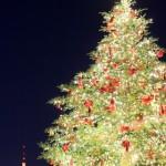 社会人の男性が貰って喜ぶクリスマスプレゼント2014を厳選してみた!