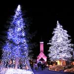 名古屋周辺のクリスマスデート2015!ムード満点の大きなツリーが見れる場所!